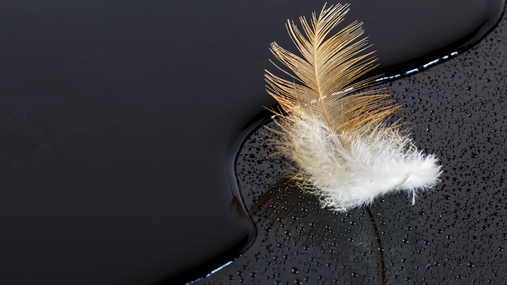 Feather on water - black surface_Ultra HD